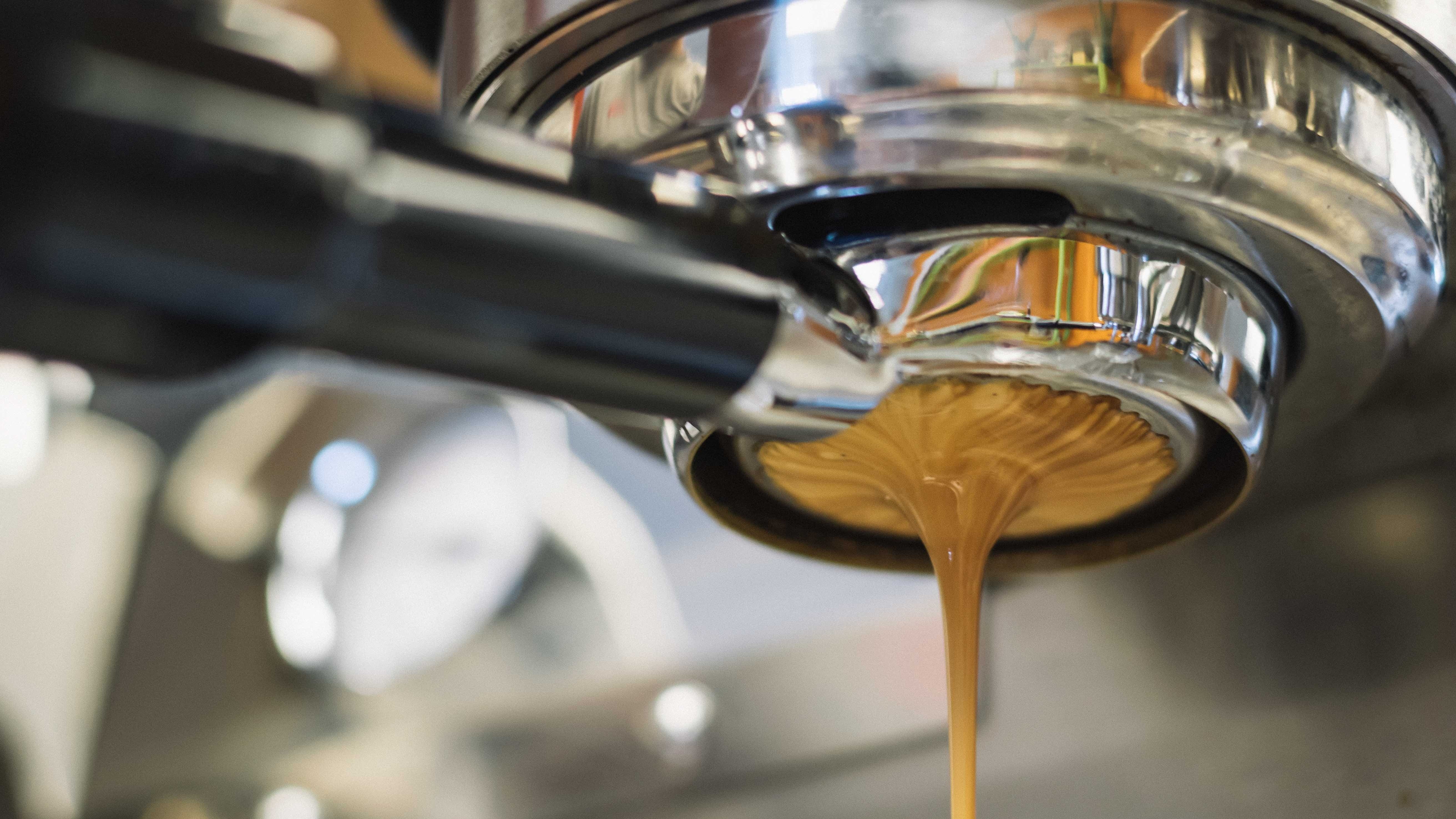Coffee_and_MFC_barrier_properties-772604-edited.jpg