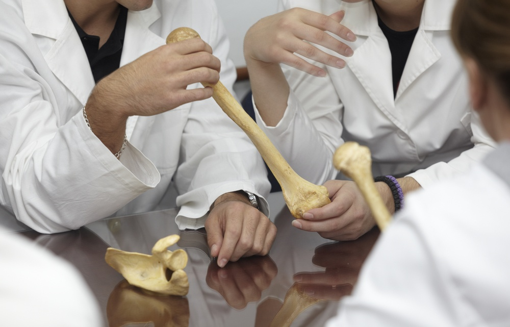 close up students holding a bone at biology class.jpeg